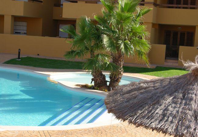 Albatros Playa 3 con piscina comunitaria - Resort Choice