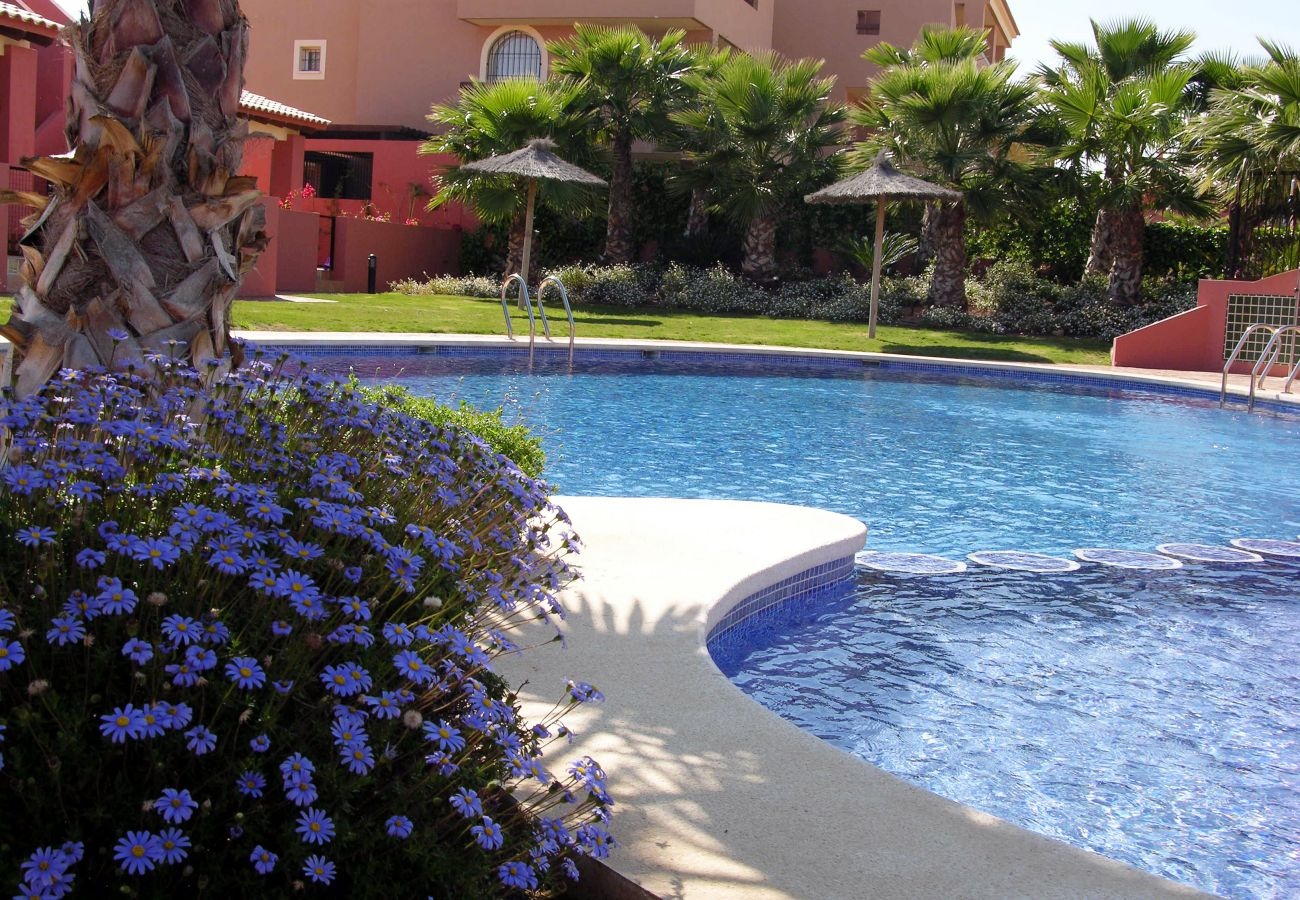Gran piscina en Arona 1 - Resort Choice
