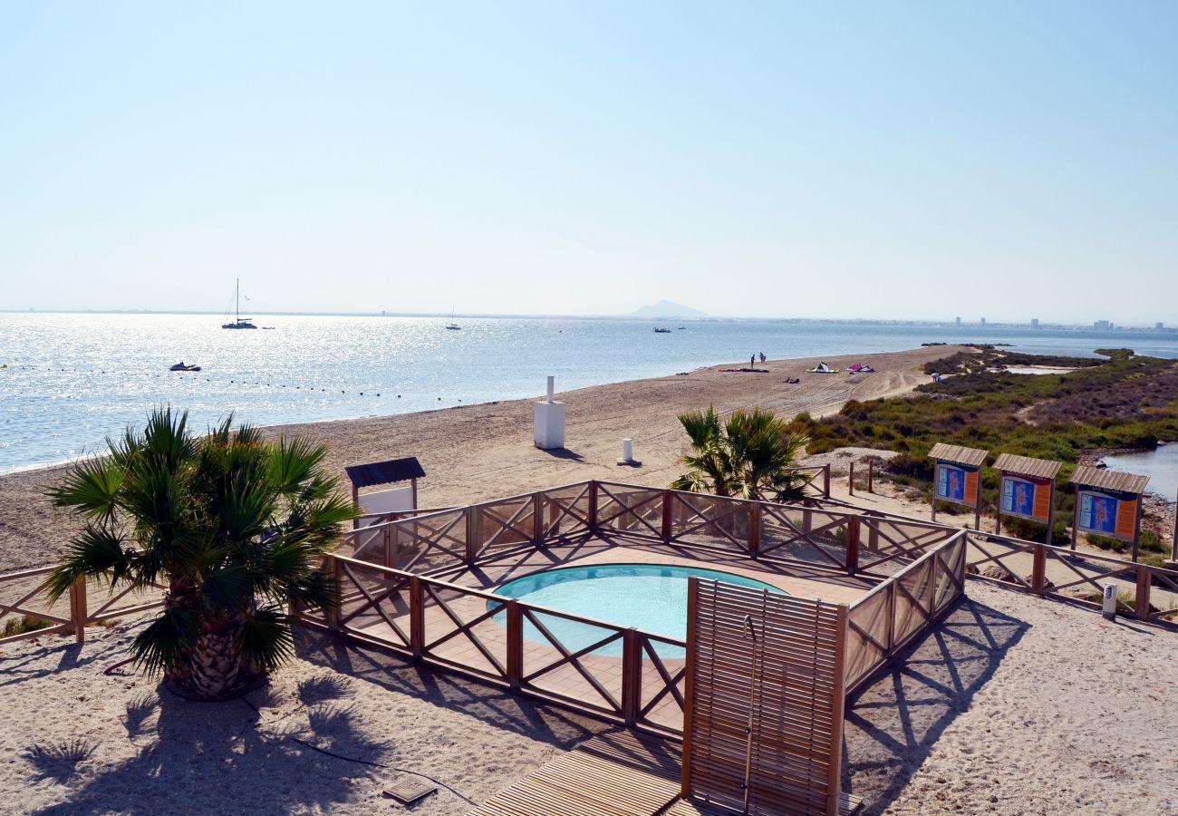 Gran piscina comunitaria en la urbanización Los Arenales - Resort Choice