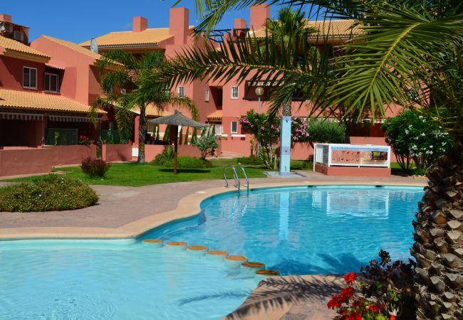 Gran piscina comunitaria en Albatros 2 - Resort Choice