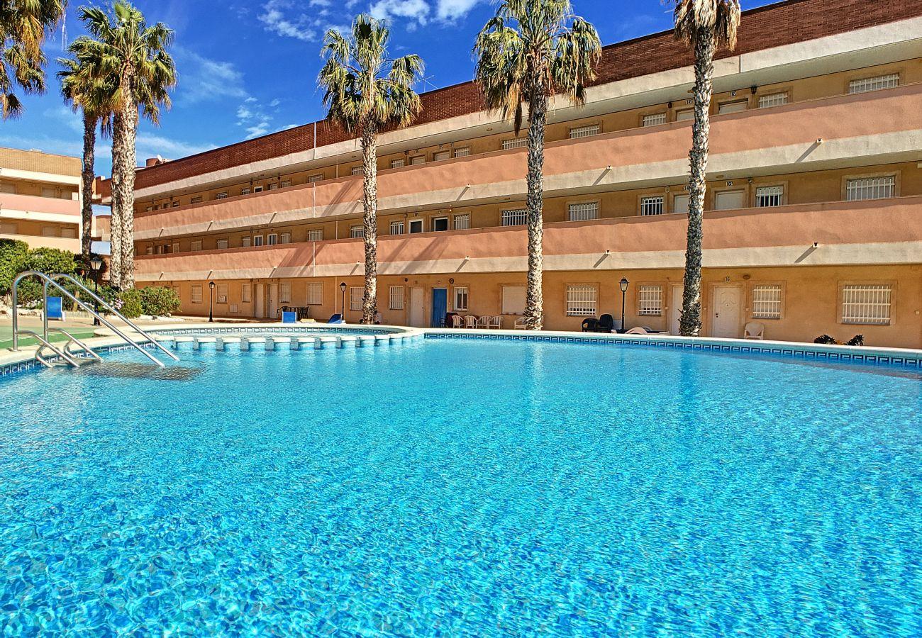 Apartamento en Los Nietos - El Palmeral de Los Nietos - 2409